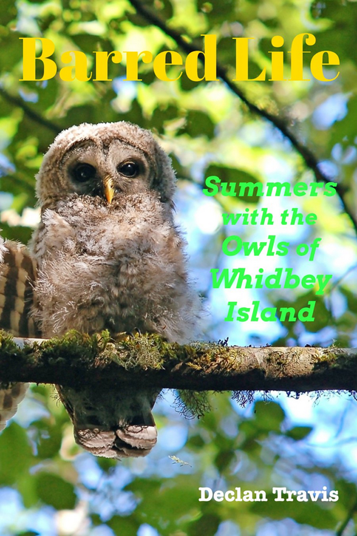 Barred-Life-Summers-with-the-Owls-of-Whidbey-Island-cover-image