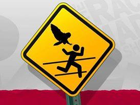 warning-Owl-Attack-zone